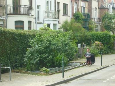 Petit jardinet devant la maison sur la rue.